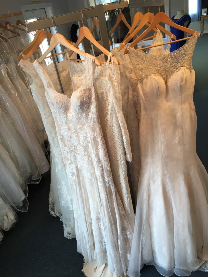 Maine Coast Weddings & Special Events
